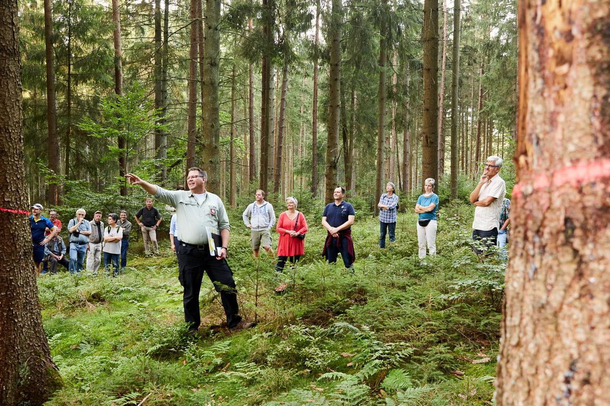 Bild zur Exkursion im Klecker Wald